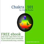 chakra 101 ebook